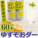 【ふるさと納税】曽於市産ゆずを使った炭酸飲料!ゆずそおダー【...