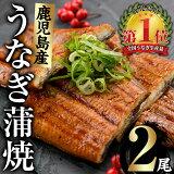 【ふるさと納税】鹿児島県産うなぎ蒲焼Aセット計240g(120g×2尾)