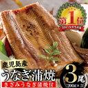 【ふるさと納税】鹿児島県産うなぎ蒲焼Bセット 鰻蒲焼 計600g(約200g×3尾) きざみうなぎ蒲焼 計100g(50g×2個) タレ・山椒付き 急速冷凍で焼きたての