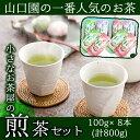 【ふるさと納税】山口園の一番人気!小さいお茶屋の煎茶、大容量...