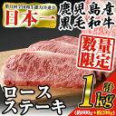 【ふるさと納税】《数量限定企画》日本一の牛肉!鹿児島県産黒毛