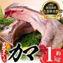 【ふるさと納税】キハダマグロ(もしくはメバチマグロ)のカマ約