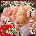 【ふるさと納税】黒毛和牛 小腸 ホルモン 700g (もつ鍋・焼肉用)