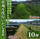 【ふるさと納税】空地の草刈り代行サービス 10坪単位【ひなた】