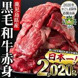【ふるさと納税】日本一の和牛!鹿児島県産黒毛和牛モモスライス 計2,020g(505g×3P、さらに505gを1P!)きめ細かな霜降りが特徴の牛肉をすきやき、しゃぶしゃぶで!【ナンチク】 b5-080