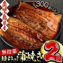 【ふるさと納税】うなぎ生産量日本一!日本初!無投薬で育った鰻