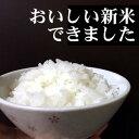 【ふるさと納税】有明町産「なつほのか」甚兵衛米10kg! 【...