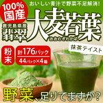 【ふるさと納税】鹿児島のおいしい青汁「翡翠大麦若葉」b-077