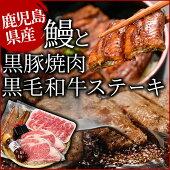 【ふるさと納税】【豪華3種】うなぎ・黒毛和牛・黒豚贅沢三昧E-034