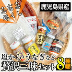 【ふるさと納税】塩から贅沢三昧セットB-088