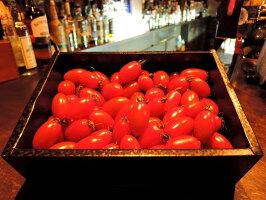 【ふるさと納税】【2021年先行予約】亜熱帯トマト「野生の証明」<化粧箱入/ギフト向け>