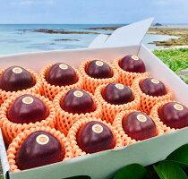 【ふるさと納税】《鹿児島県奄美大島産》《農家直送》かさりパッションフルーツ贈答用1kg