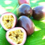 【ふるさと納税】《県認証取得》奄美のパッションフルーツ家庭用2kg