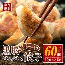 【ふるさと納税】手づくり黒豚にんにく餃子(計60個・10個入...