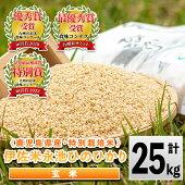 【ふるさと納税】《新米》特別栽培米永池ひのひかり玄米(25kg)鹿児島でも極良食味のお米が出来る永池地区で作ったお米!九州米サミット食味コンテスト最優秀賞を2回受賞【エコファーム永池】