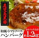 【ふるさと納税】鹿児島黒豚ハンバーグ詰合せ 【鹿児島ますや】