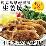 鹿児島県産黒豚生姜焼き(タレ付)