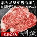 【ふるさと納税】黒毛和牛サーロインステーキ4枚 【財宝】