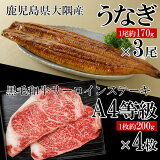 うなぎ(無頭)3尾+黒毛和牛サーロインステーキ4枚