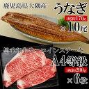 【ふるさと納税】うなぎ(無頭)10尾+黒毛和牛サーロインステーキ6枚 【財宝】