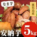 【ふるさと納税】鹿児島産 安納芋5kg【甘いも販売所】