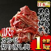 【ふるさと納税】極上焼肉!鹿児島県産黒毛和牛(A4等級)カルビ3種1kg【財宝】