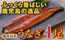 【ふるさと納税】鹿児島県産 特上うなぎ160g×4尾【財宝】...