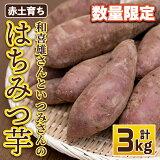 【ふるさと納税】和喜雄さんといつみさんの「はちみつ芋」3kg_iio-393