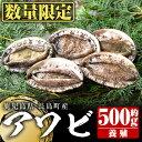 【ふるさと納税】養殖アワビ 約500g_jfa-462