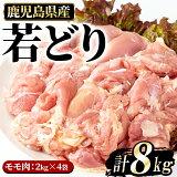 【ふるさと納税】まつぼっくり 若どりモモ肉8kg_ matu-537