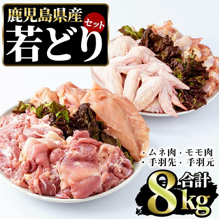 【ふるさと納税】まつぼっくり 若どりムネ肉・モモ肉・手羽先・手羽元各2kgセット_matu-546