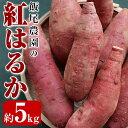 【ふるさと納税】飯尾農園の紅はるか5kg_miio-388