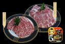 【ふるさと納税】5等級!鹿児島黒牛焼肉セット