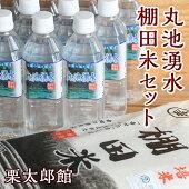 【ふるさと納税】C12丸池湧水・棚田米セット