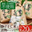 【ふるさと納税】<栽培期間中農薬化学肥料不使用>お米(白米)...