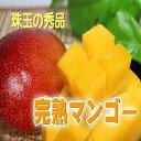 【ふるさと納税】南国の恵み 完熟マンゴー 秀品約1kg