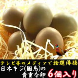【ふるさと納税】『満天☆青空レストランでご紹介!』【先行受付】日本キジ(国鳥)の貴重な卵