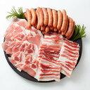 【ふるさと納税】黒豚「優美豚」BBQスペシャルセット|鹿児島