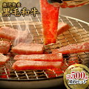【ふるさと納税】たかしやセット(焼肉)500g/1パック セ