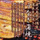 【ふるさと納税】【鹿児島県大隅産】うなぎ備長炭手焼蒲焼5尾
