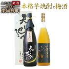 【ふるさと納税】薩摩と梅酒★2本セット★