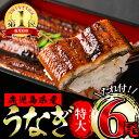 【ふるさと納税】東串良町のうなぎ蒲焼(無頭)<特大>(200