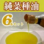 絶品★純菜種油