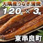大隅産うなぎ蒲焼★3尾★