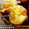 【ふるさと納税】「特選紅蜜芋!紅はるかの焼き芋」