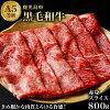 【ふるさと納税】黒毛和牛【A5等級】赤身スライス800g