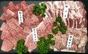 【ふるさと納税】鹿児島県産焼肉セット約2.1kg(約10人前)