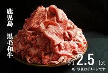 【A01002】鹿児島県産黒毛和牛小間切れ約1.5kg