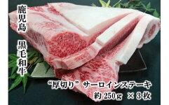 "【B01020】鹿児島県産黒毛和牛""厚切り""サーロインステーキ"