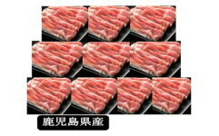 【B05034】特盛!鹿児島県産豚ローススライス